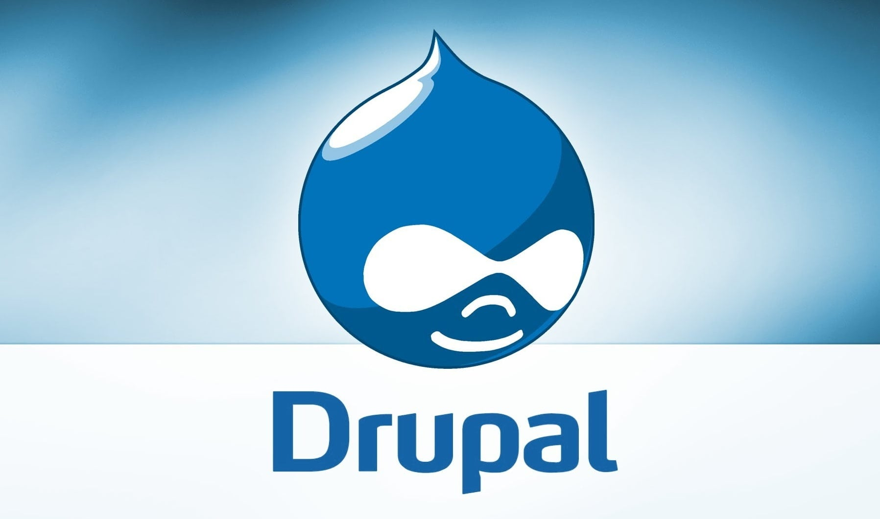 Why You Should Prefer Using Drupal for Website Development